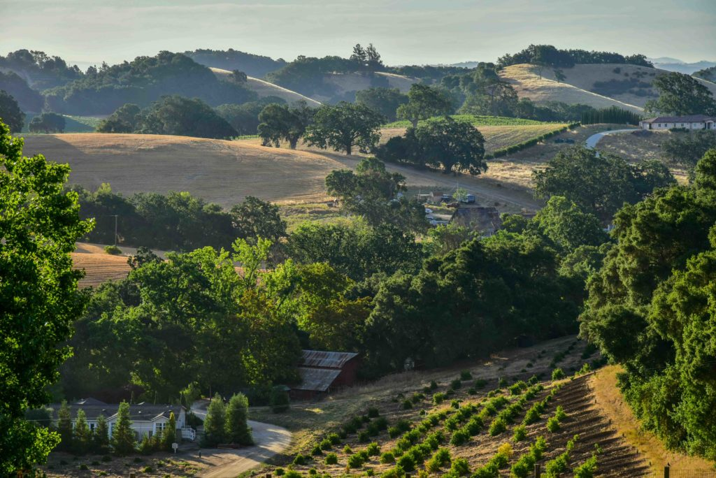 Amazing hillside and vineyard views from the porch at Orchard Hill Farms in the West Side of the Paso Robles Wine Region of Central Coast California