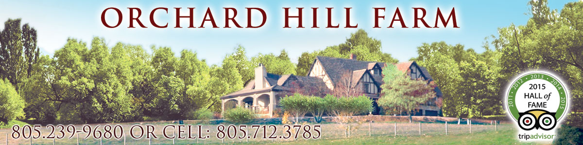 Orchard Hill Farm Bed and Breakfast